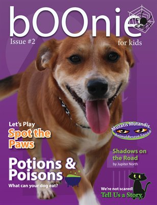 Boonie For Kids, Issue #2