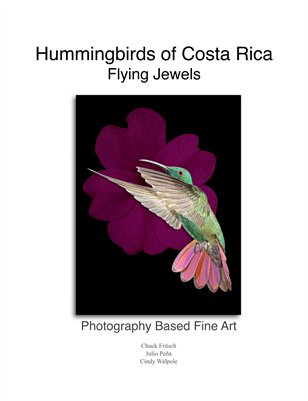 Hummingbirds of Costa Rica, Flying Jewels