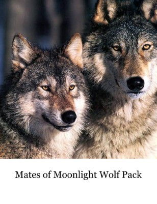 Daily Wolf Howl Tail Wag 1