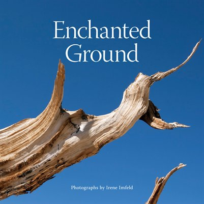 Enchanted Ground