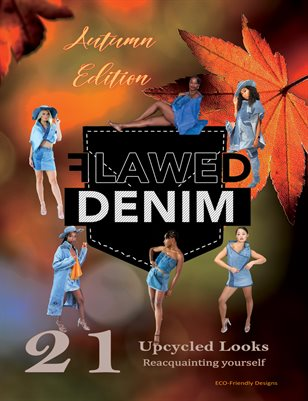 Flawed Denim