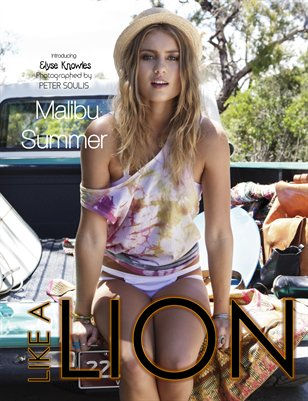 December 2013 Summer Edition - Like a Lion Magazine