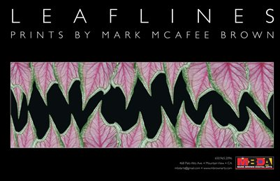 LeafLines • Prints by Mark McAfee Brown