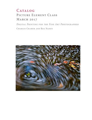 Picture Element Class, March 2017