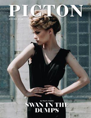 Picton Magazine JULY 2019 N198