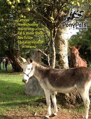 December 2013 Pony Pals Magazine -- Vol. 3 #7
