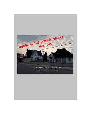 Murder in the Mohawk Valley Book Two