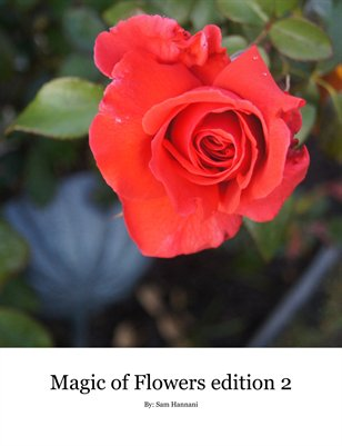 The Magic of Flowers Edition 2