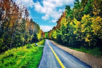 Fall Season in Fort McMurray, AB, Canada 🇨🇦