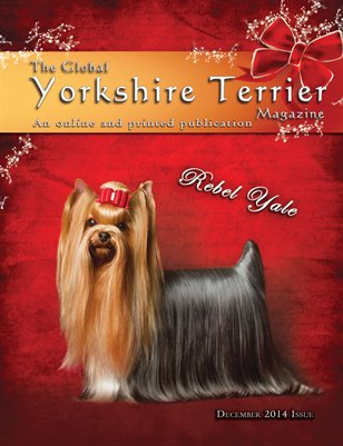 The Global Yorkshire terrier Magazine -December 2014 Issue