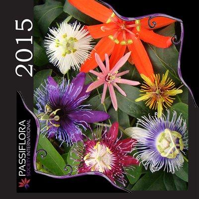 2015 PSI Calendar