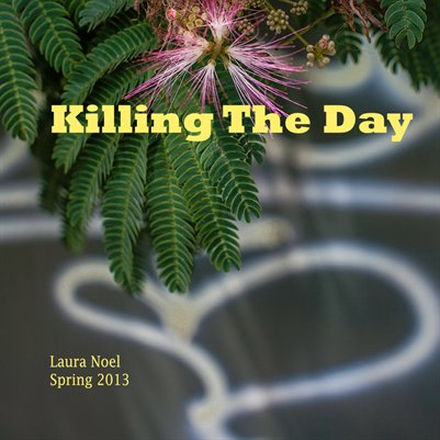 Killing The Day Spring 2013, Volume 2