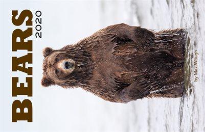 2020 Bears Calendar