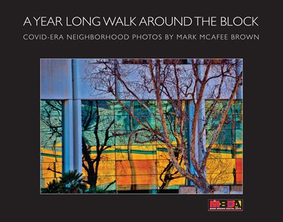 A Year Long Walk Around the Block