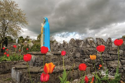 """Tulips around the Virgin Mary"" (POSTER)"