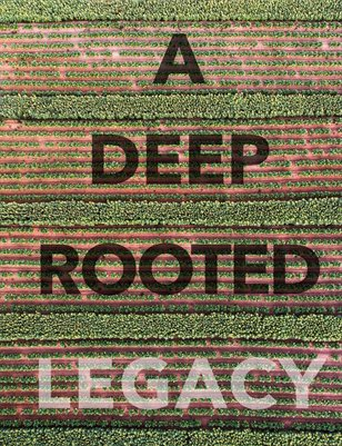 Deep_Rooted_Legacy_Foust