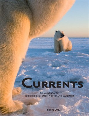 Currents Spring 2013