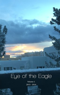 Eye of the Eagle Volume 1