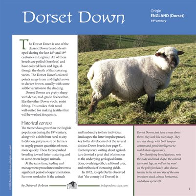 Deborah Robson's Guide to Fiber: Dorset Down