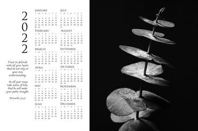 2022 Calendar - Proverbs 3:5,6 - Eucalyptus
