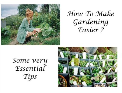 How to Make Gardening Easier?