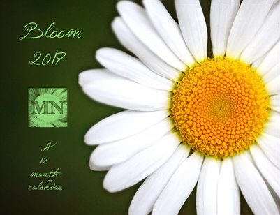 Bloom: A 2017 Fine Art Desk Calendar