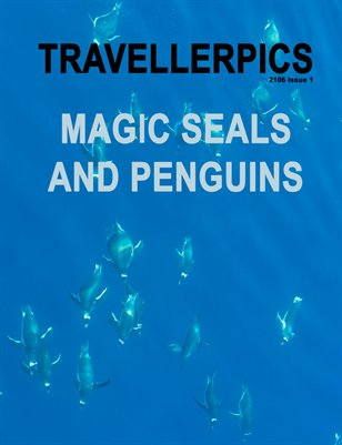 Magic Seals and Penguins