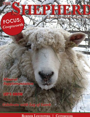 The Shepherd December 2015