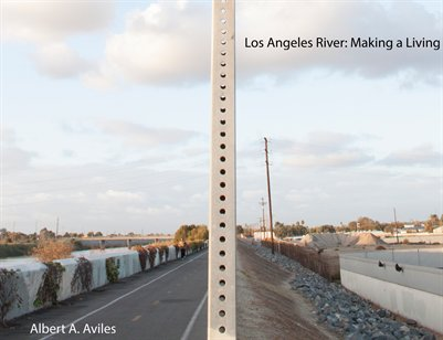 Life in the L.A. River