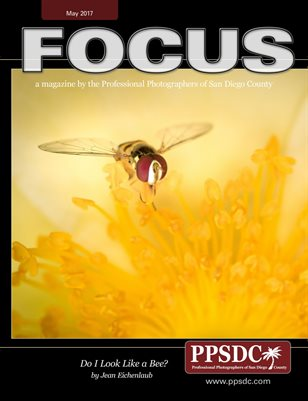 FOCUS May 2017