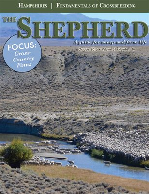 The Shepherd October 2016