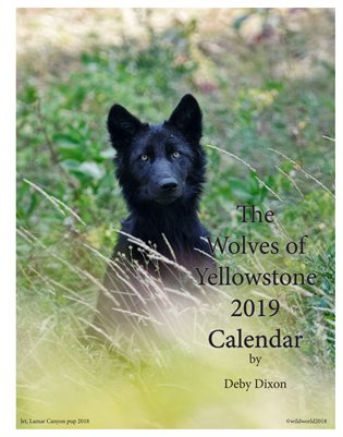 2019 Wolves of Yellowstone Calendar