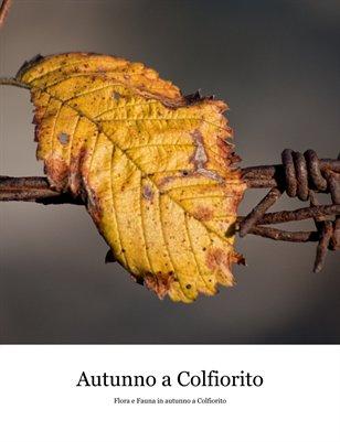 Autunno a Colfiorito