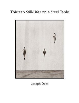 Thirteen Still-Lifes on a Steel Table
