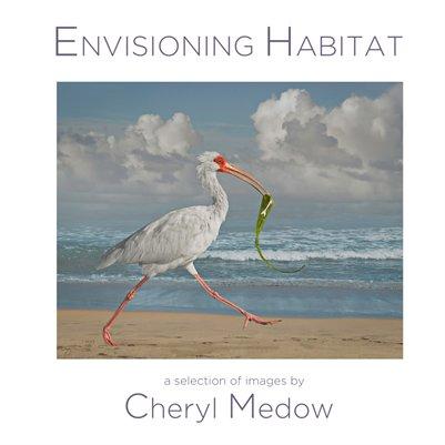 Envisioning Habitat Images