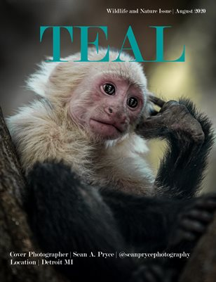 Teal Magazine Special Wildlife & Nature Issue