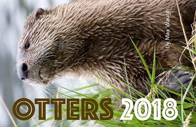 2018 Otters Calendar