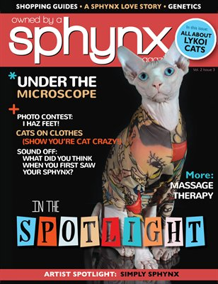 Owned by a Sphynx, Vol. 2, Issue 3