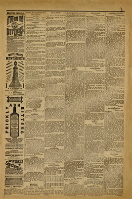 (PAGES 3-4) February 6, 1885 Mayfield Monitor Newspaper, Mayfield, Graves County, Kentucky