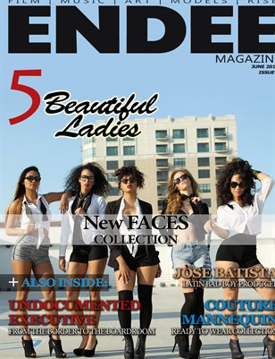 ENDEE Magazine June 2013