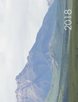 Travel 2018
