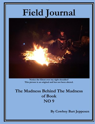 Field Journal The Madness behind the Madness of NO 9