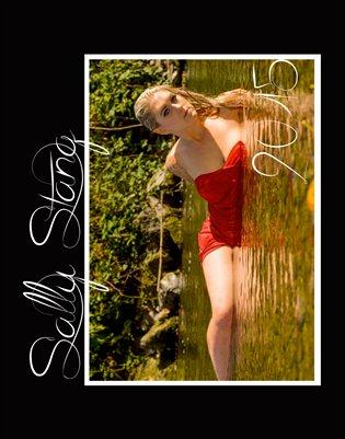 Sally Stang 2015 Calendar