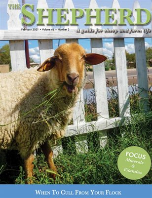 The Shepherd February 2021