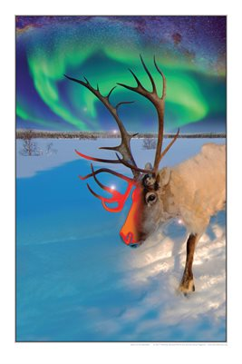 Spirit of the Reindeer