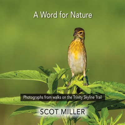 A Word for Nature: Photographs from walks on the Trinity Skyline Trail