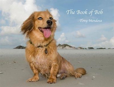 The Book of Bob 2