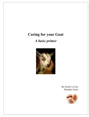 Caring for Your Goat - A Basic Primer