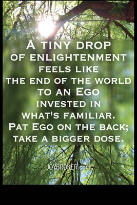 A Tiny Drop of Enlightenment