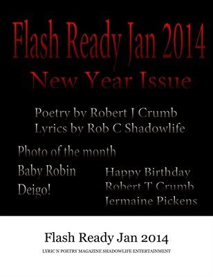 Flash Ready Jan 2014